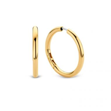 TI SENTO - Milano Earrings 7782SY